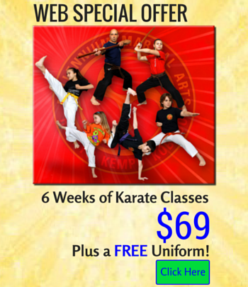 Millennium Martial Arts Web Special Offer