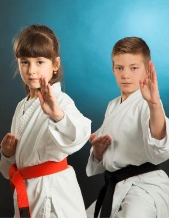 Karate Classes Kids